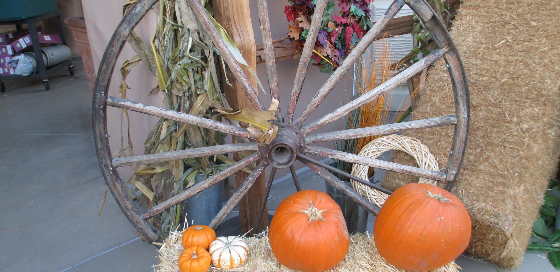 Wagon Wheel Vignette