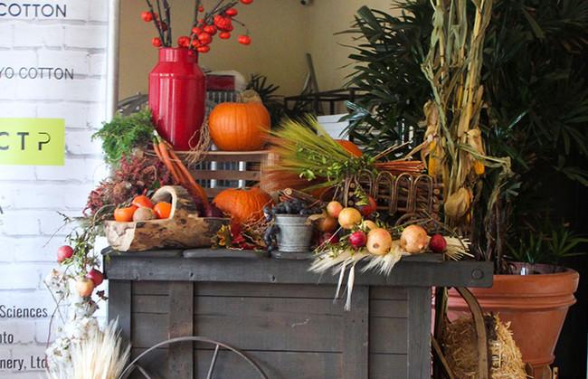 Harvest Cart (8).jpg