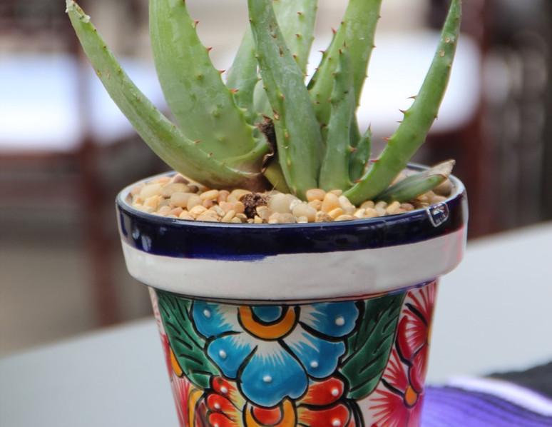 Mexican Ceramic 1.jpg