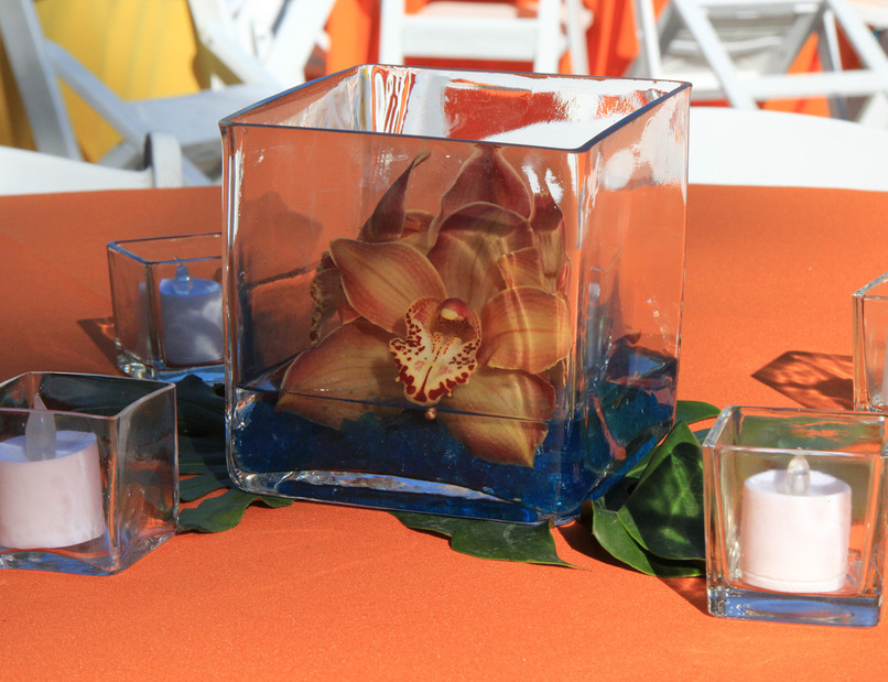 Orchids cube on leaf 1.jpg