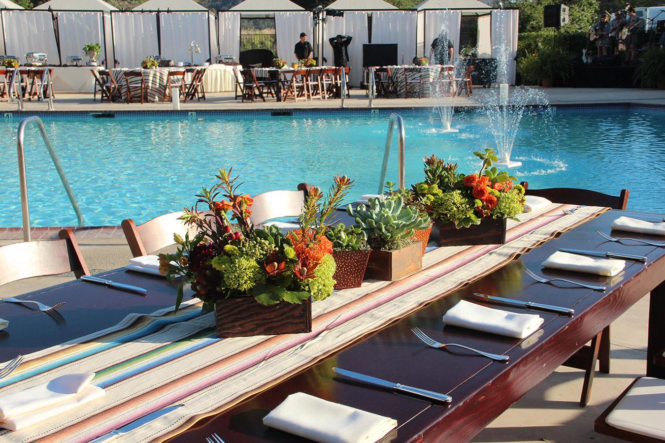 Succulent Grouping Pool Safe.jpg