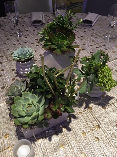 White Vase Grouping w Succulents 4.JPG