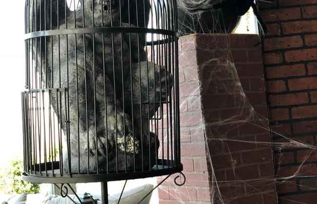 Gargoyle in Cage.jpg