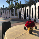 Red Roses in Gold Vases Hollywood (11).j