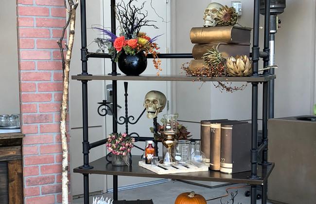 Close-up Scary lab Bookshelf.JPG