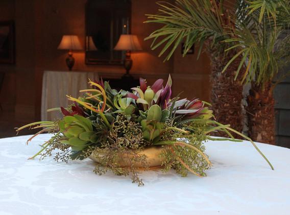 Elegant New Succulents with Flowers.jpg