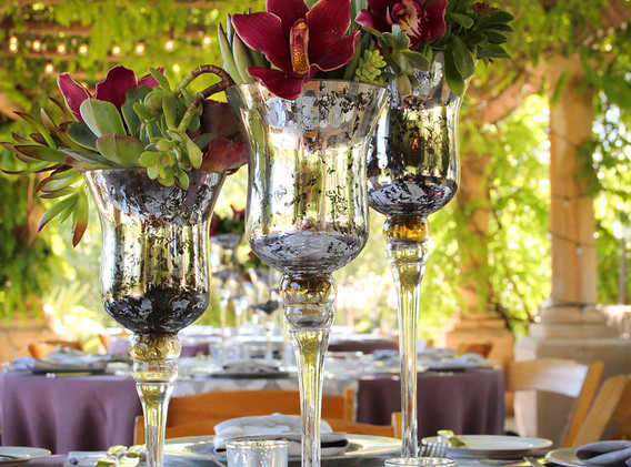 succulents in goblets_0849.jpg