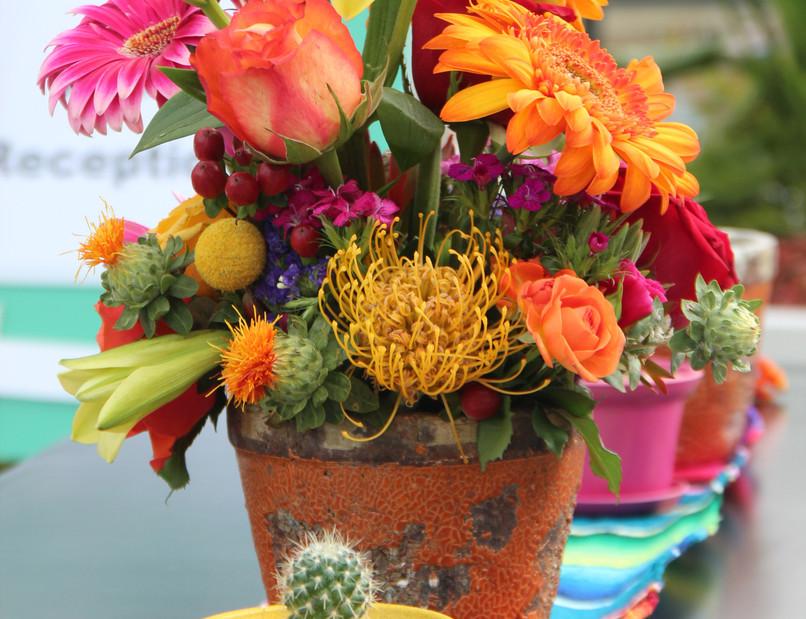 Spanish Grouping w Cactus.jpg