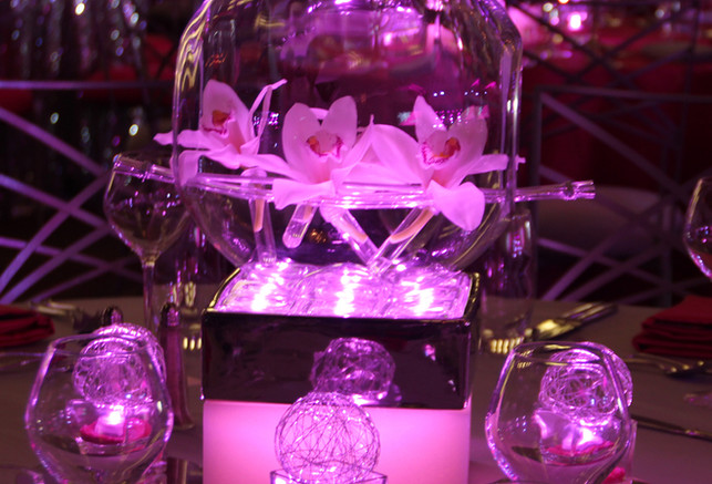 Modern Terrarium with Orchids and Lighti