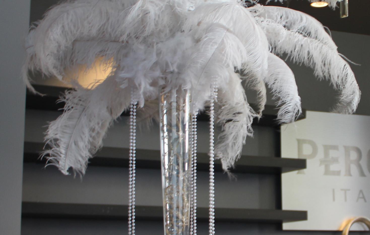 Ostrich Plume.jpg