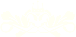 velvet_logo_white_edited.png