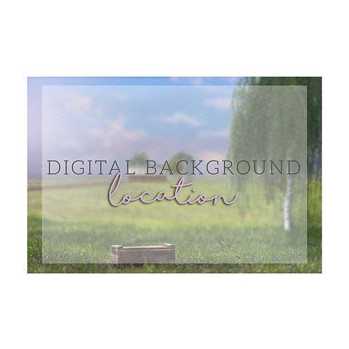 Barn | Farm Digital background