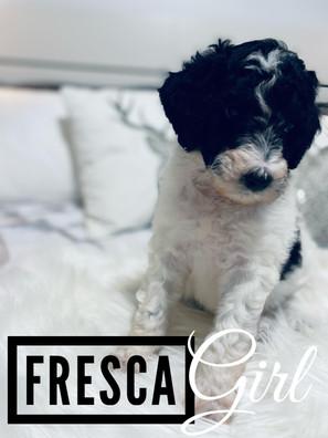 Fresca - Girl