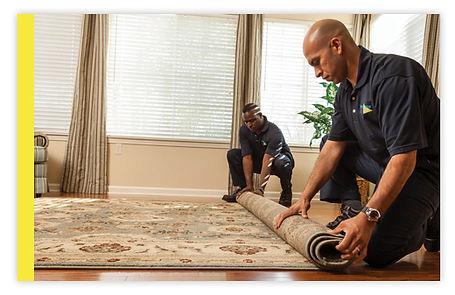 carpet cleaning turtle lake, wi