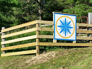 barn quilt with a blue flower on a fence