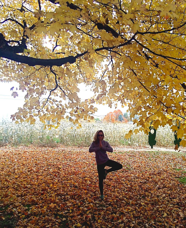 Autumn yoga; tree pose