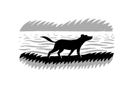 Dog-by-River.jpg