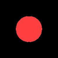 Flow logo-01.png