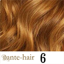 Dante-Ilink 6
