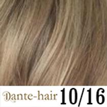Dante Flex 10/16
