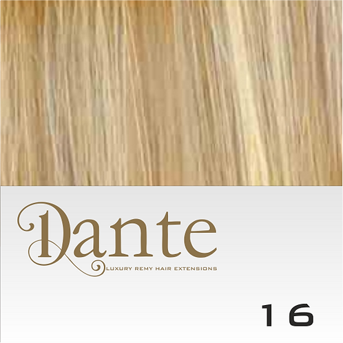 Dante-Ilink 16