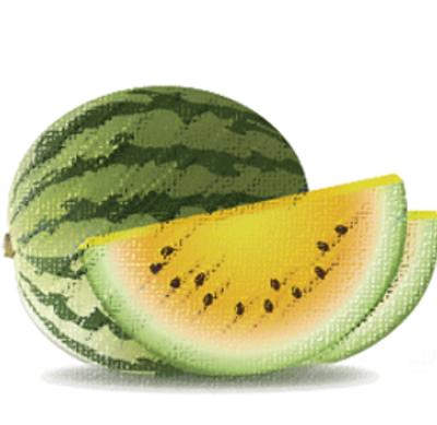 BMO Kalahari Melon.png