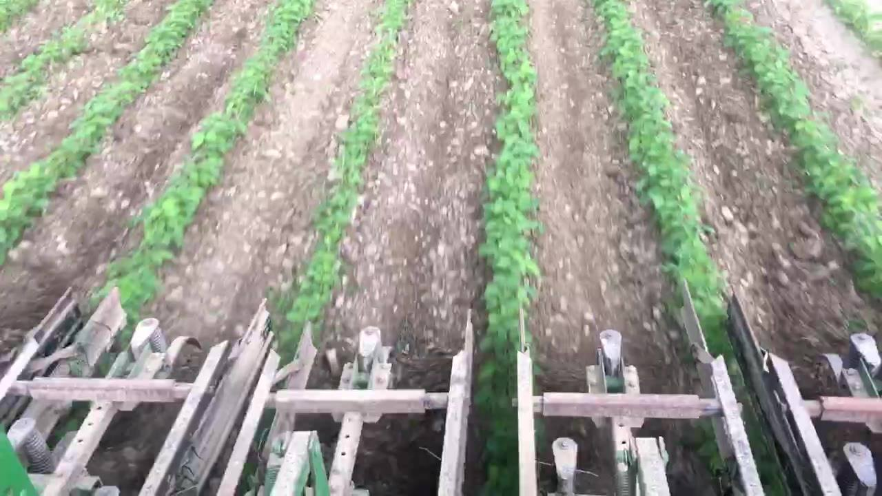Another cultivator video