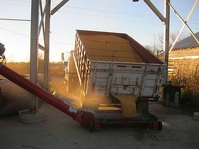 Unloading grain(corn) Fall 2015