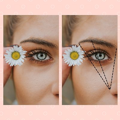 Brow-_Wimpernlifting-1.png