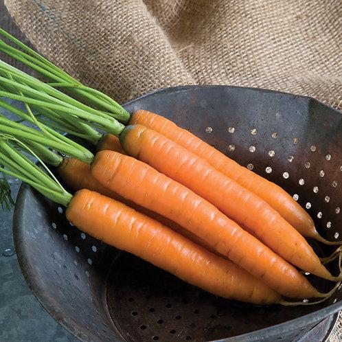 Yaya Carrot Pelleted     Organic 250 pelleted seed per packet