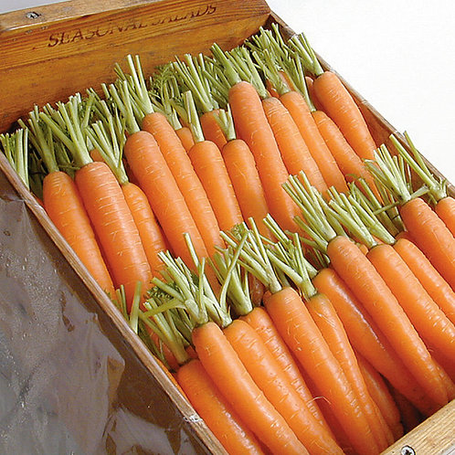 Napoli Carrot Pelleted    Organic 250 seed packet