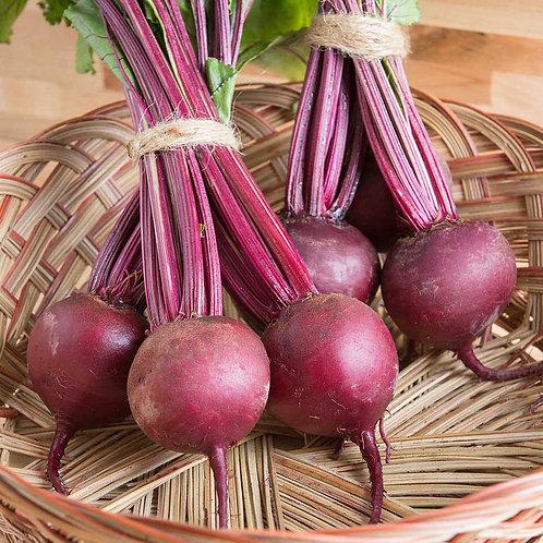 Boro Beet seed Raw Organic 300 seeds