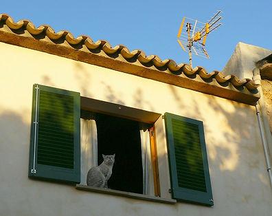 window-302256_1280.jpg