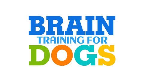 Dog training first game
