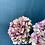 Thumbnail: Vintage Hydrangeas