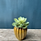 Thumbnail: Ribbed Ceramic Pot