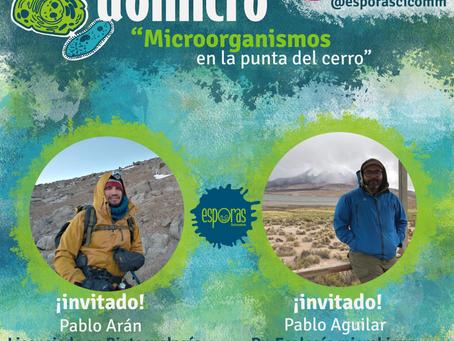 Domicro: Microorganismos en la punta del cerro