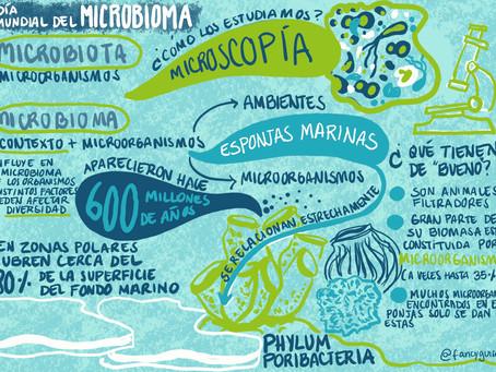 Día Mundial del Microbioma