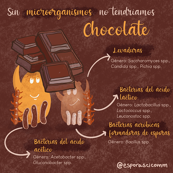 Chocolate1_ES.png