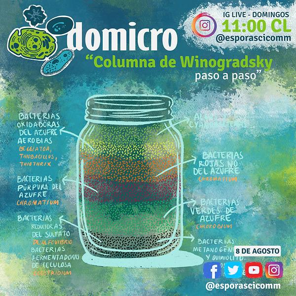 Domicro08DEAGOSTO.png