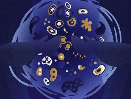 Día internacional de los Microorganismos 2020