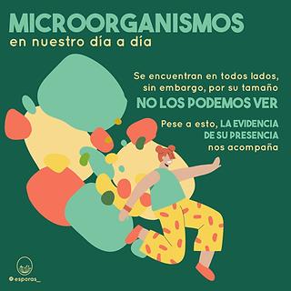 Microorganismos_AgrobacteriumTumefaciens