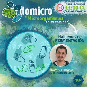 ¿Microorganismos en mi comida?