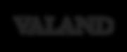 VALAND_logo.png
