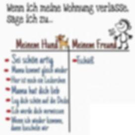 FB_IMG_1544031269890.jpg