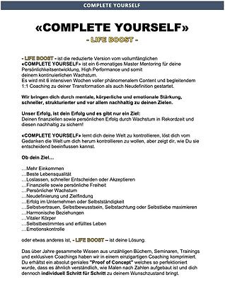 Marc Schoeffel-Life Boost-Mentoring-Coaching-Online Schulung-Online Academy-Online Coachin