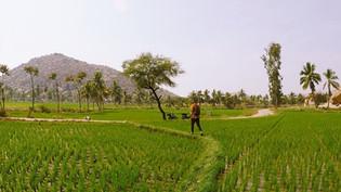 India Travel Video