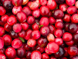 Cranberries have a high content of vitamin C and antimicrobial properties. In medicine, cranberries can be applied to treat bladder and kidney infections. When used in cat diets, the valuable contents of the berry may aid the prevention of urinary tract infections.