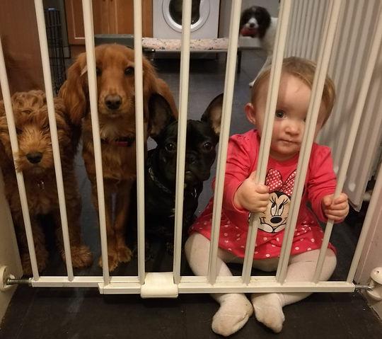 Puppies and children_edited.jpg