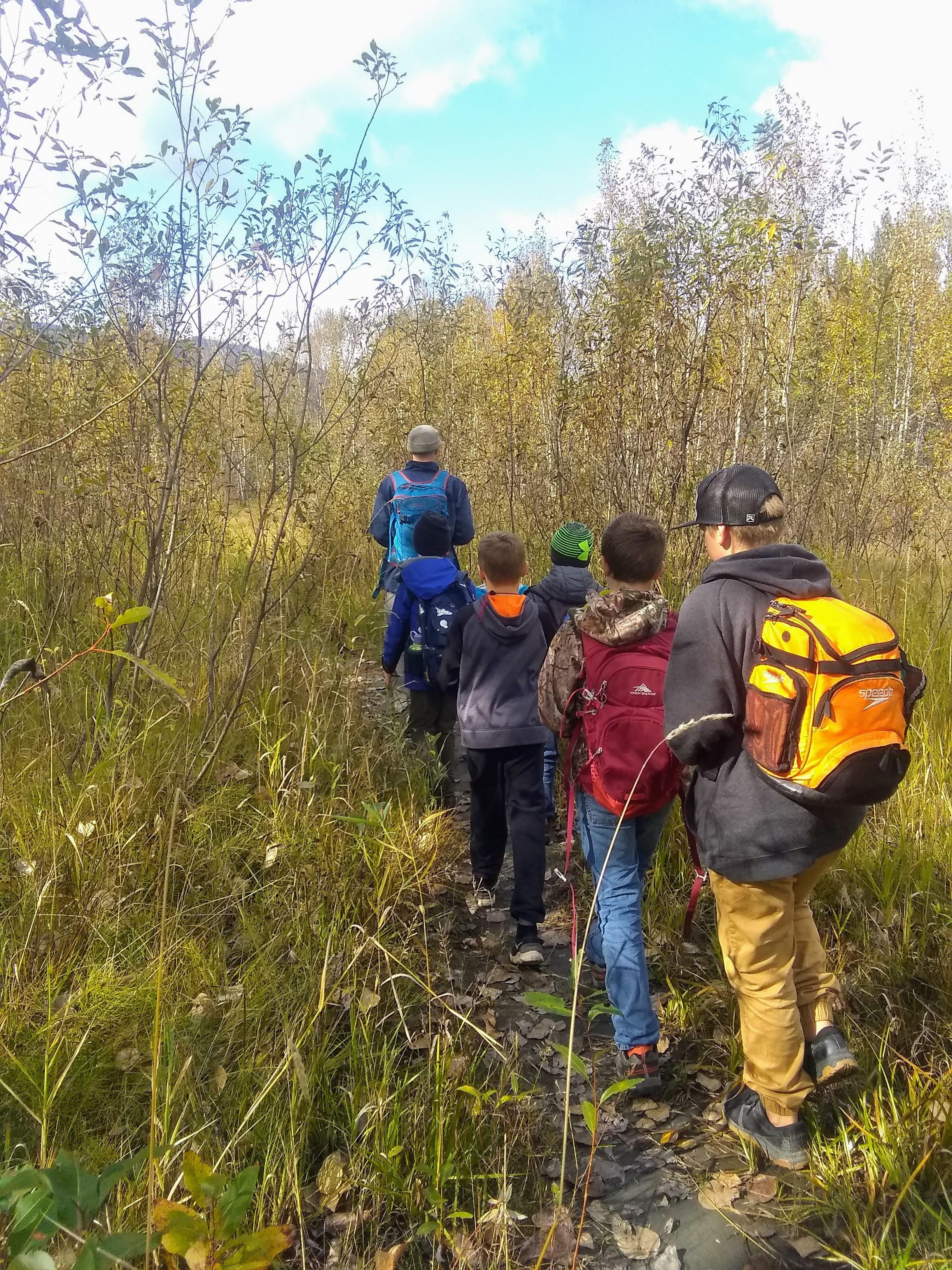 In School Workshops/Field Trips